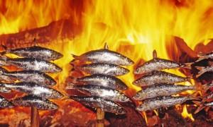 Especies desconocidas: La nueva cocina de la mar