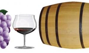 El Vino; una combinación de texturas, sabores y aromas (III)