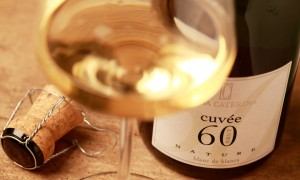 El lenguaje criticado del vino