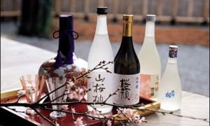 El Sake, el clásico aperitivo japonés