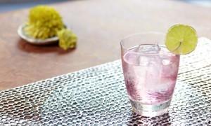 Nu – Roc, un cóctel muy refrescante