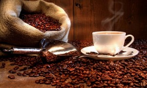 Albert Adrià elige al mejor chef del café