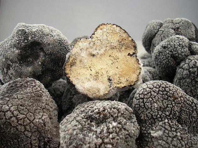 ¿Sabías que hay más de 70 tipos de Trufa?