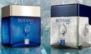Williams & Humbert lanza Botanic, una ginebra jerezana