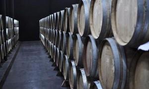 Factores para una cata de vinos (III)