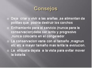 Consejos para una conservación adecuada