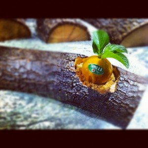Mandarina de Pato