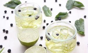 Mermelada de gin tonic y cítricos