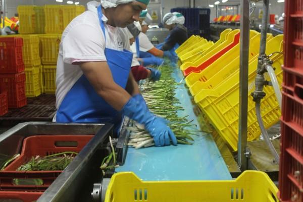 El mercado agroalimentario peruano