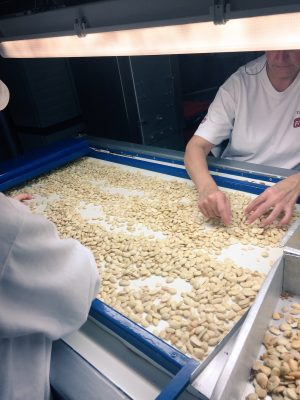 La almendra se selecciona para luego ser tostada