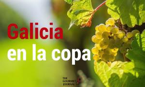 Los 5 vinos gallegos más internacionales