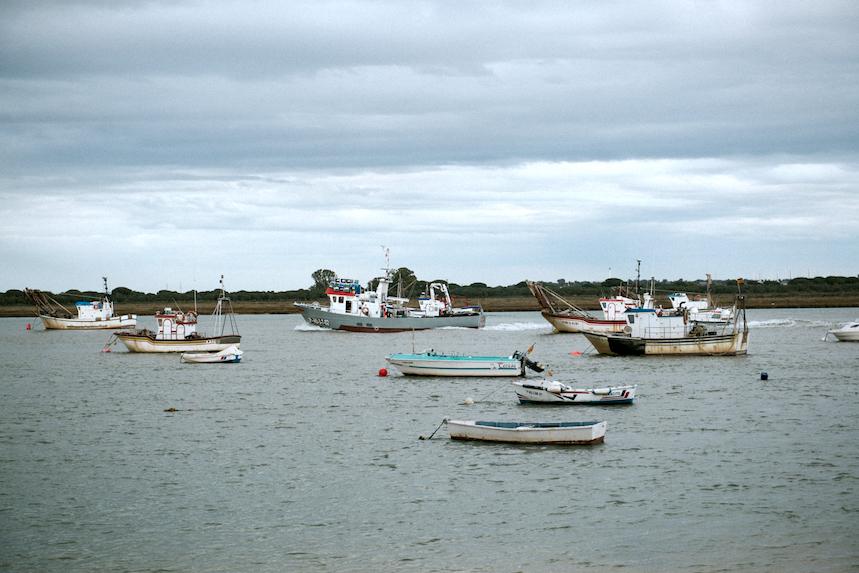 La costa onubense es reconocida a nivel internacional por la calidad de su marisco.