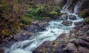 Raw water, la tendencia del agua sin filtrar