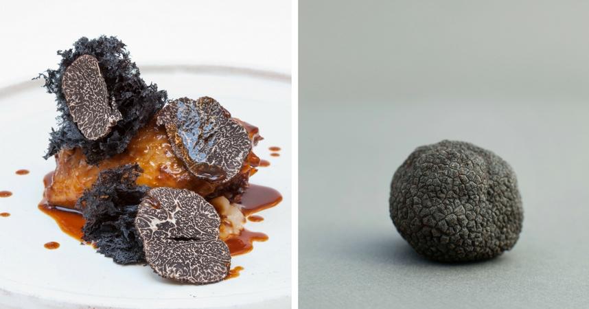 Trufa negra, el oro de la alta gastronomia
