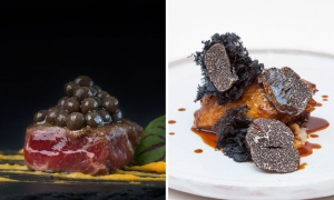 Black truffle, the most exclusive delicacy of gastronomic feasts
